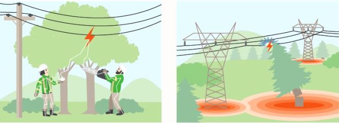 Trees and power lines did-you-know illustration with text