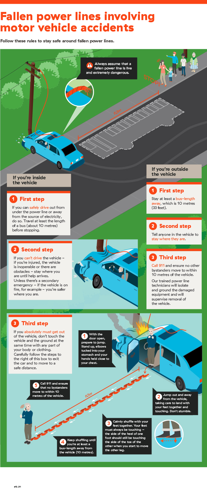 Infographic of motor vehicle accidents