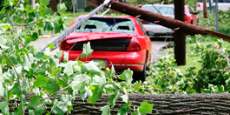 downed-line-pole-on-red-car-265x207.jpg