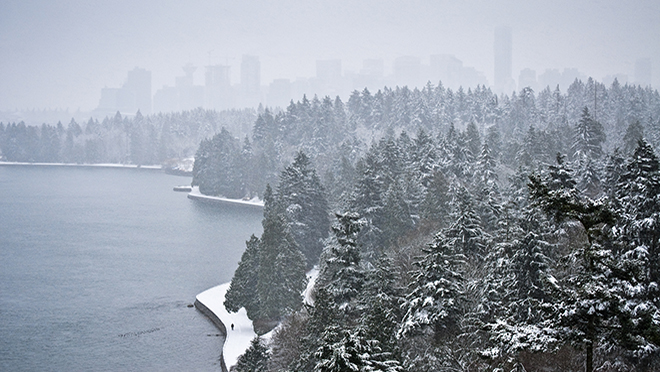 Downtown Vancouver, snow walker and Douglas Firs in Stanley Park.