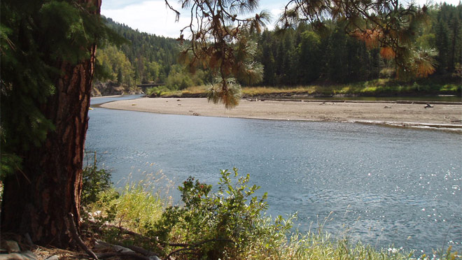 Shuswap River Recreation area