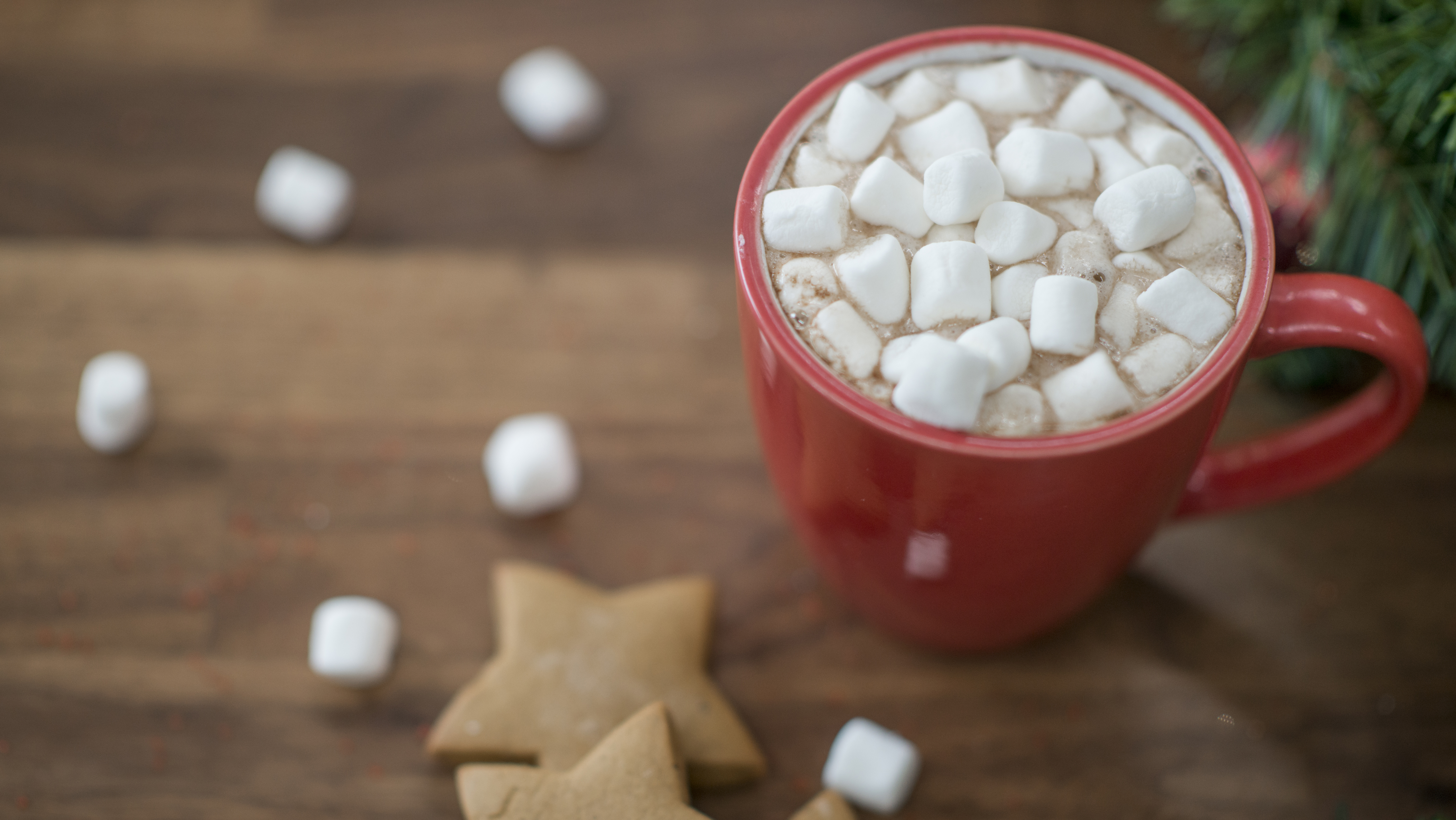 A mug of hot chocolate with marshmallows sits on a wooden table.