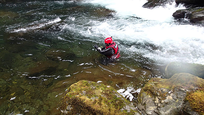 Image of contractor in snorkelling gear counting fish at Elk Falls Canyon