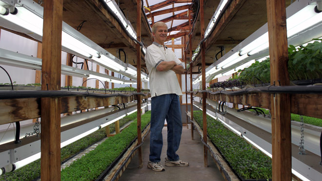 Herb grower uses lighting upgrade to save money, cut ...