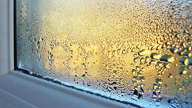 Image of condensation on the inside of a window