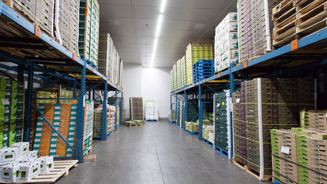 Image of the interior of Oppenheimer Foods warehouse facility