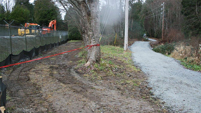 Photo of a realigned trail north of the Camosun Substation