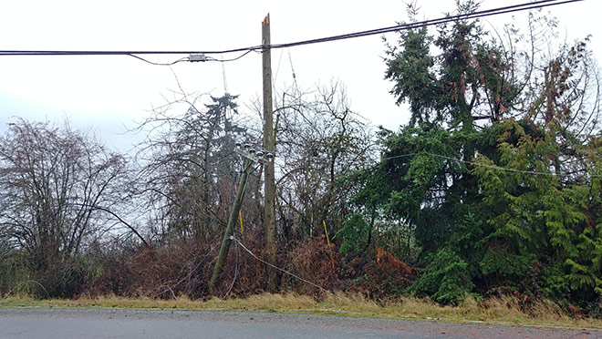 Image of broken wooden power pole from a storm
