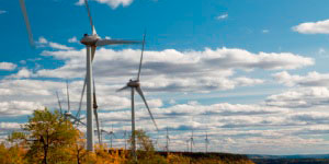Bear Mountain wind turbines in the fall