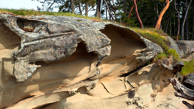 sandstone formations on beach Gabriola Island
