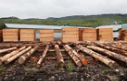 Lumber piled up outside in a lumberyard