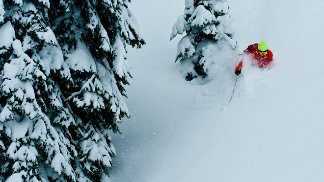 Skier in trees and powder at Revelstoke Mountain Resort