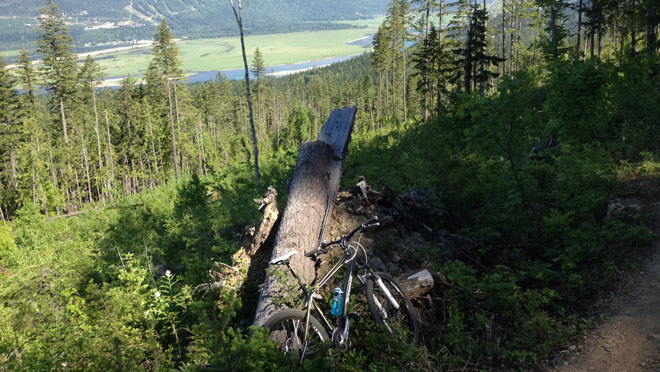View from tightrope trail at Mt. McPherson mountain bike trails in Revelstoke.