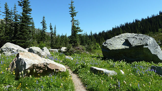 Image of hiking trail to Tenquille Lake