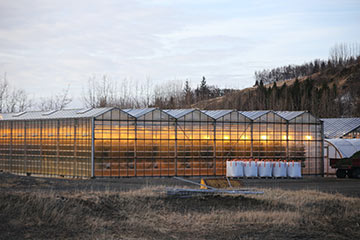 Growing demand for our LED horticulture lighting incentive