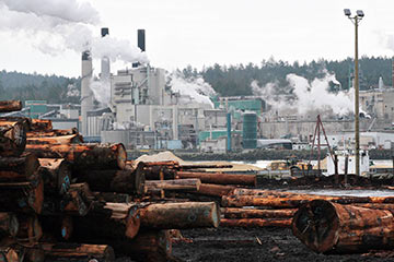 Pulp mill squeezes big savings from BC Hydro incentives