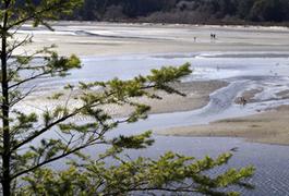 Innovative ocean energy project begins near Metchosin