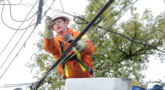 With so many trees in B.C., power outages are a reality