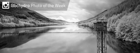 Photo of the Week