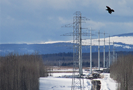 Short transmission line means big opportunities for Dawson Creek area