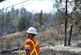 Hard work and weather contain Bear Creek wildfire