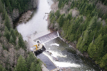 Benefits to fish drive proposal to remove dam