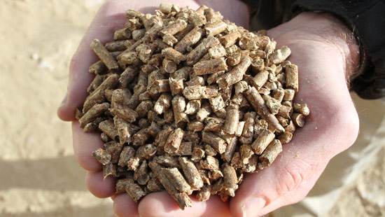 pacific_bioenergy_pellets_550x310.jpeg