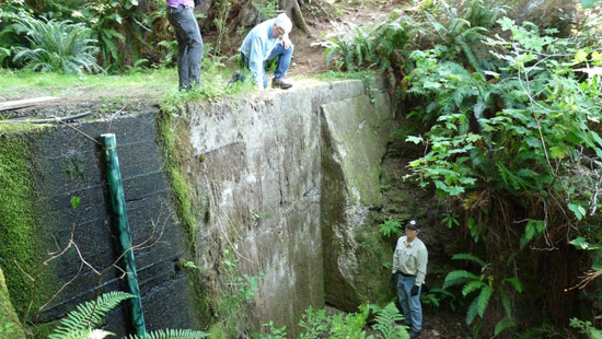 Montana Community Moves Forward With Plans For A Tiny: Sturdy Creek Dam On Haida Gwaii To Be Decommissioned